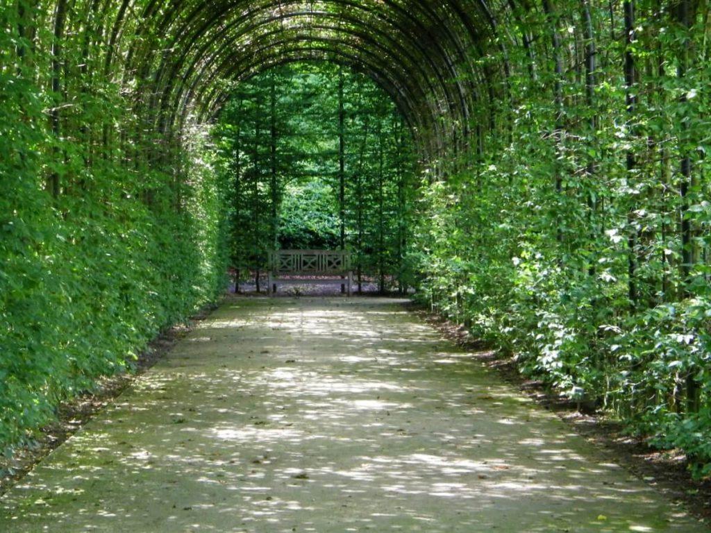 Alnwick castle, giardini