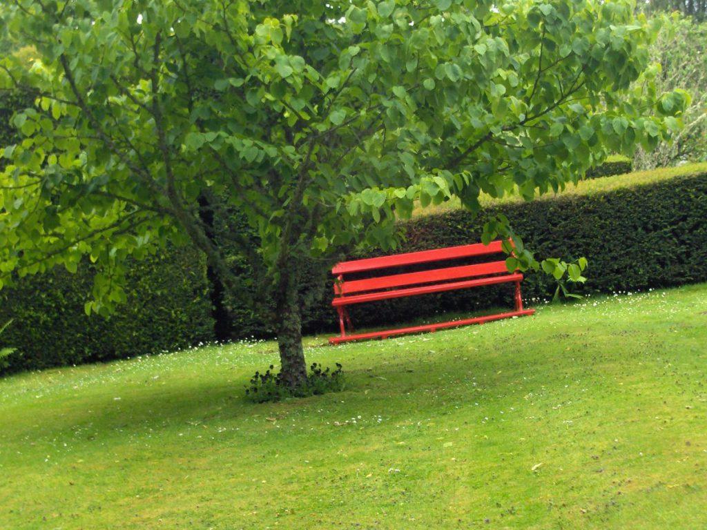 cawdor, panchina rossa e albero