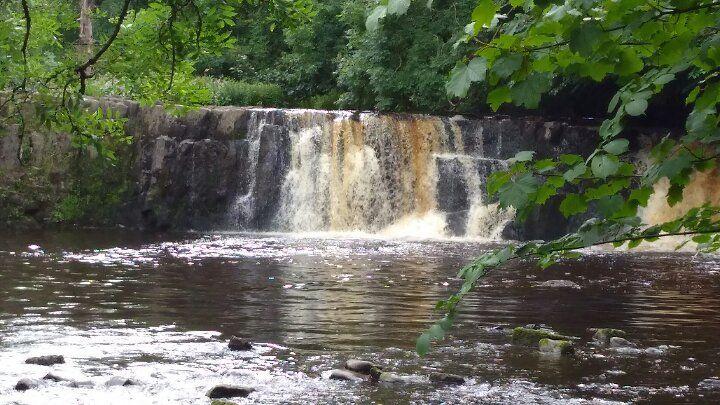cascata nel parco
