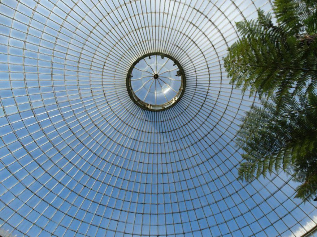 cupola dei giardini botanici di Glasgow