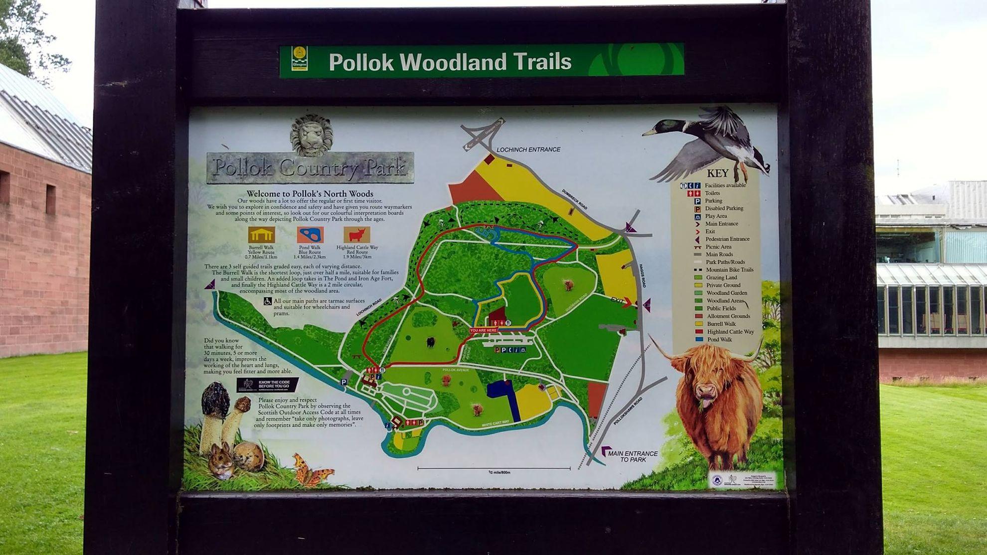Itinerario di 3 giorni a Glasgow, pollok woodland trail
