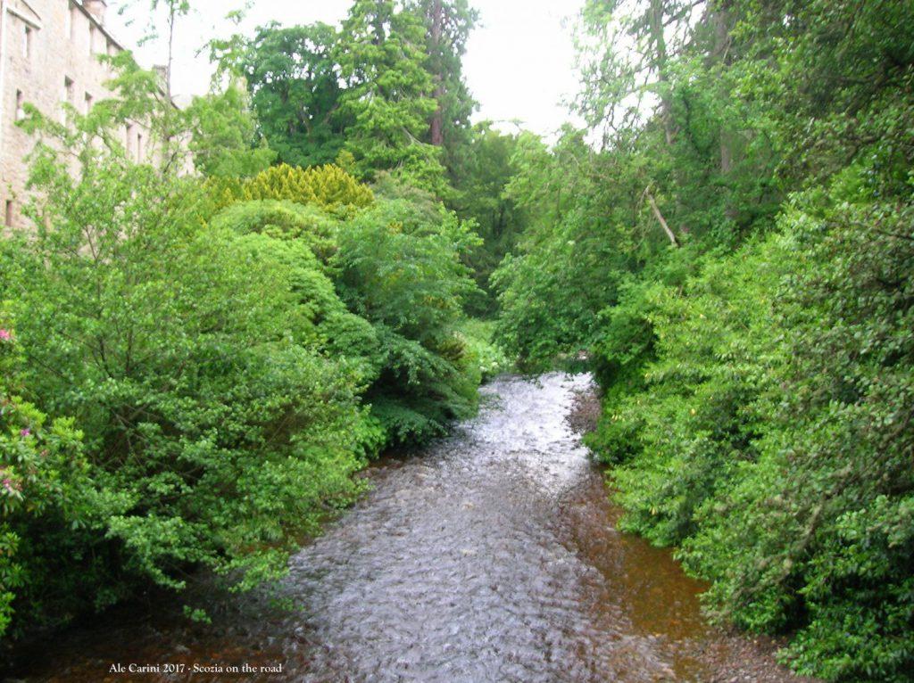 cawdor, fiume, alberi