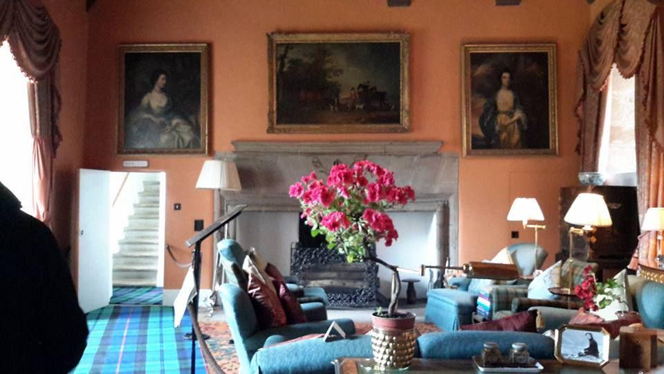 camino, fiori, divano, quadri, salotto