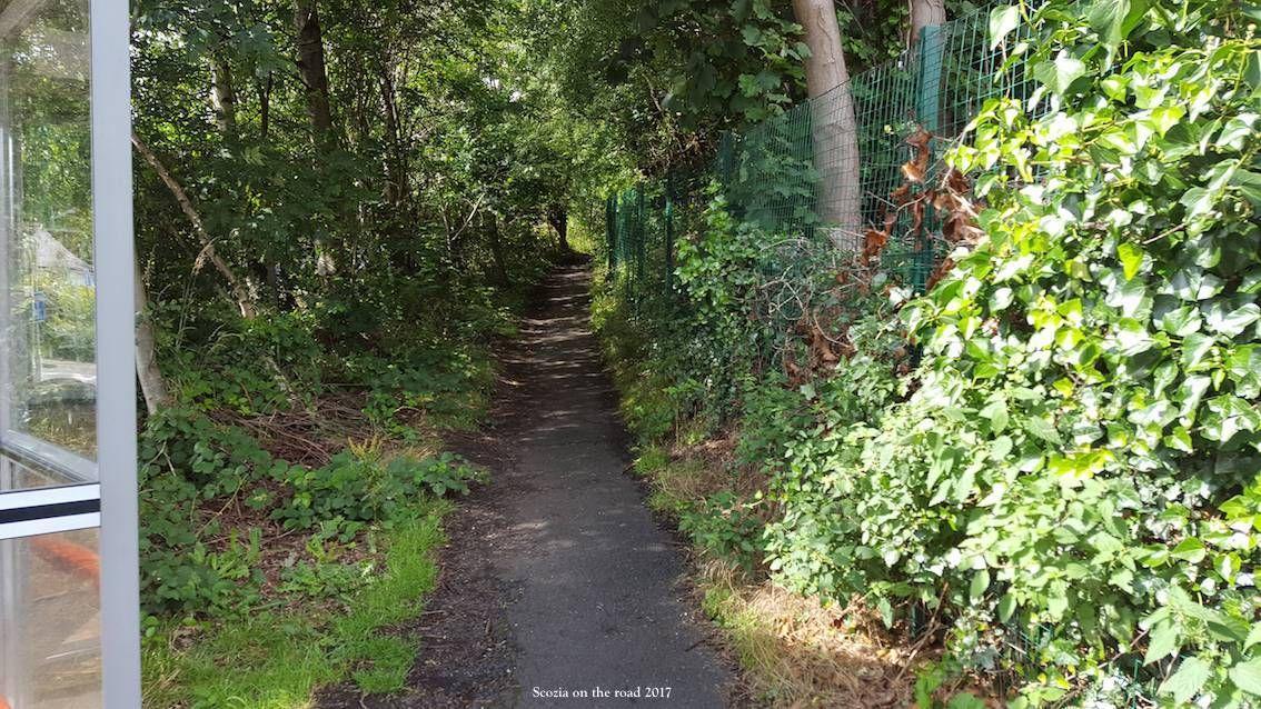 passaggio nel bosco a queensferry