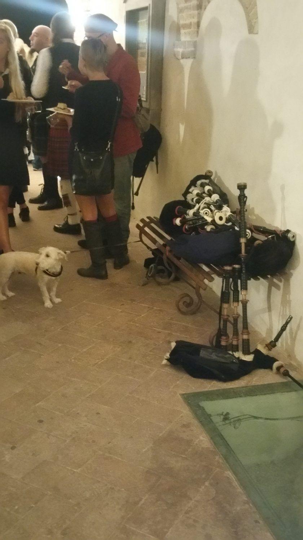 cane, tamburo, vicolo