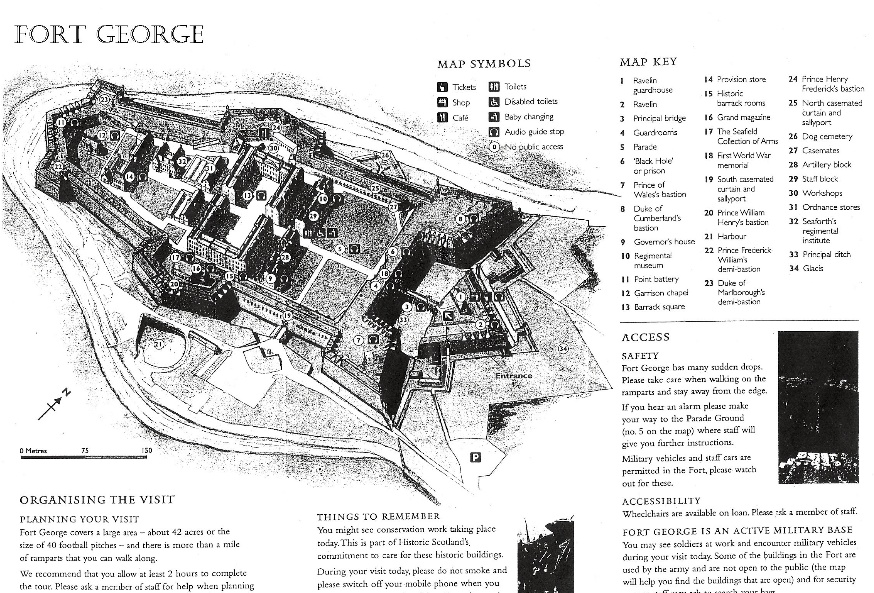 fort george piantina