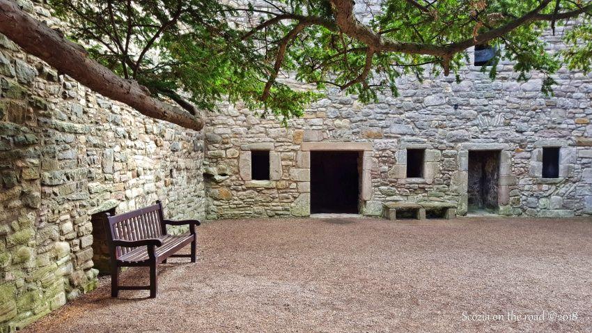 craigmillar castle, panchina, albero