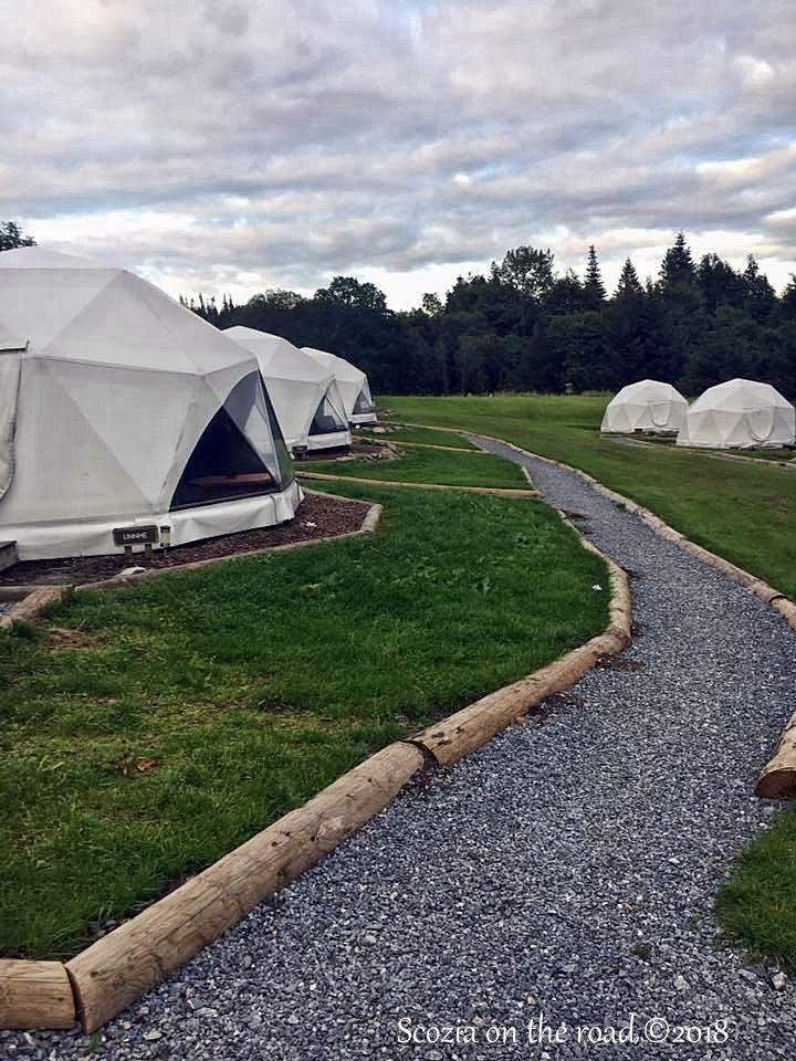 campeggio e tende