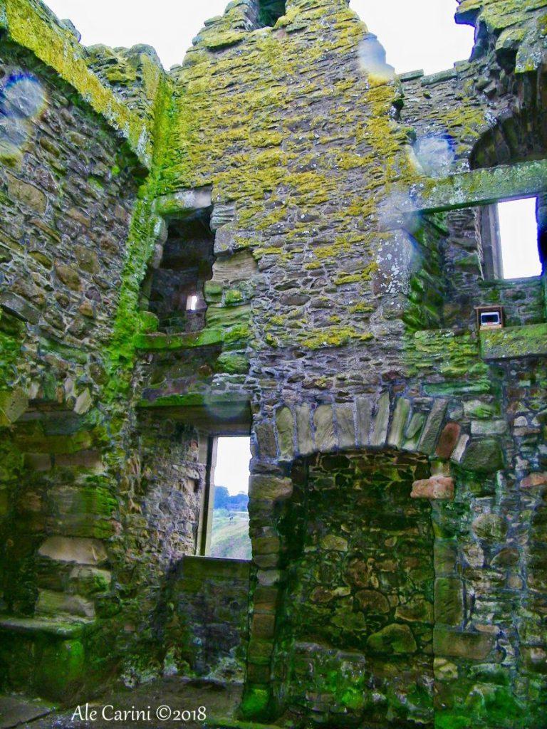 dunnottar castle, resti di edifici, muschio