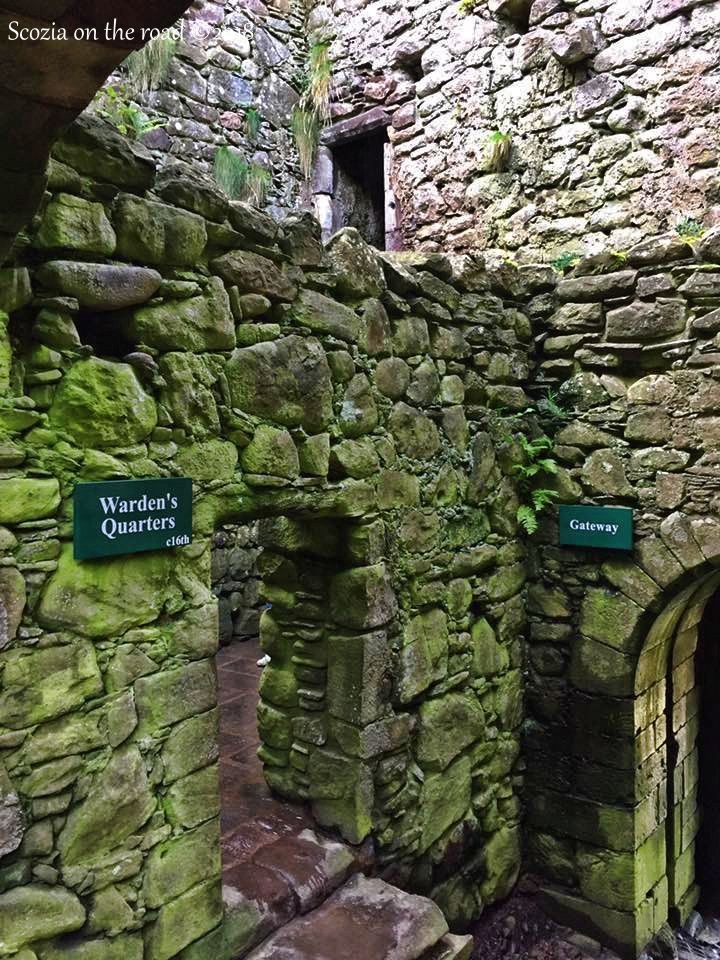interno castello, muoro verde