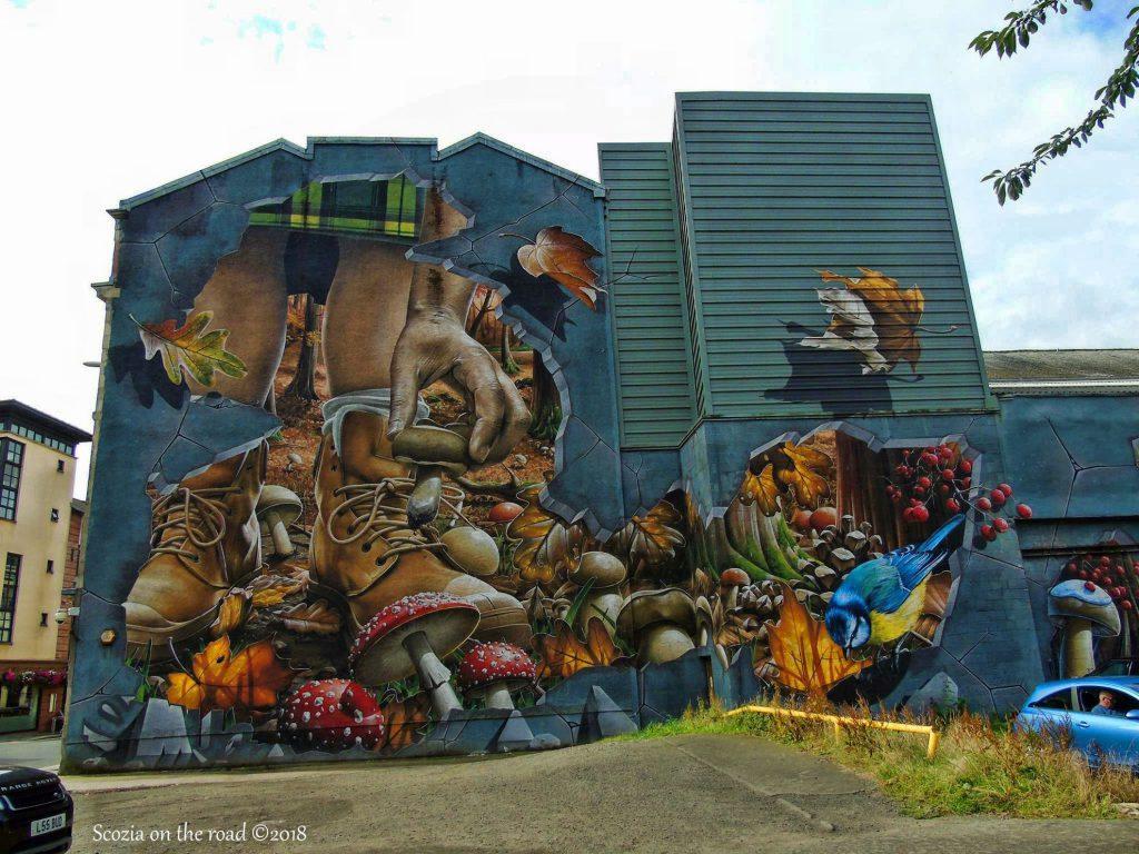 murales, scarpe e funghi