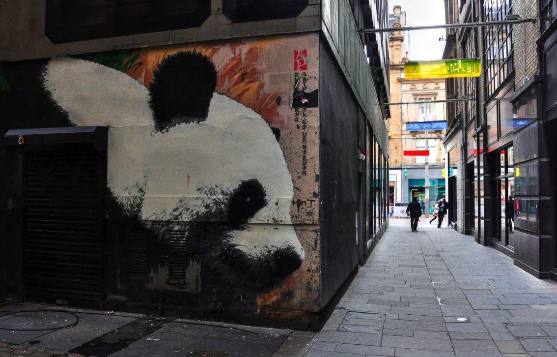 glasgow panda