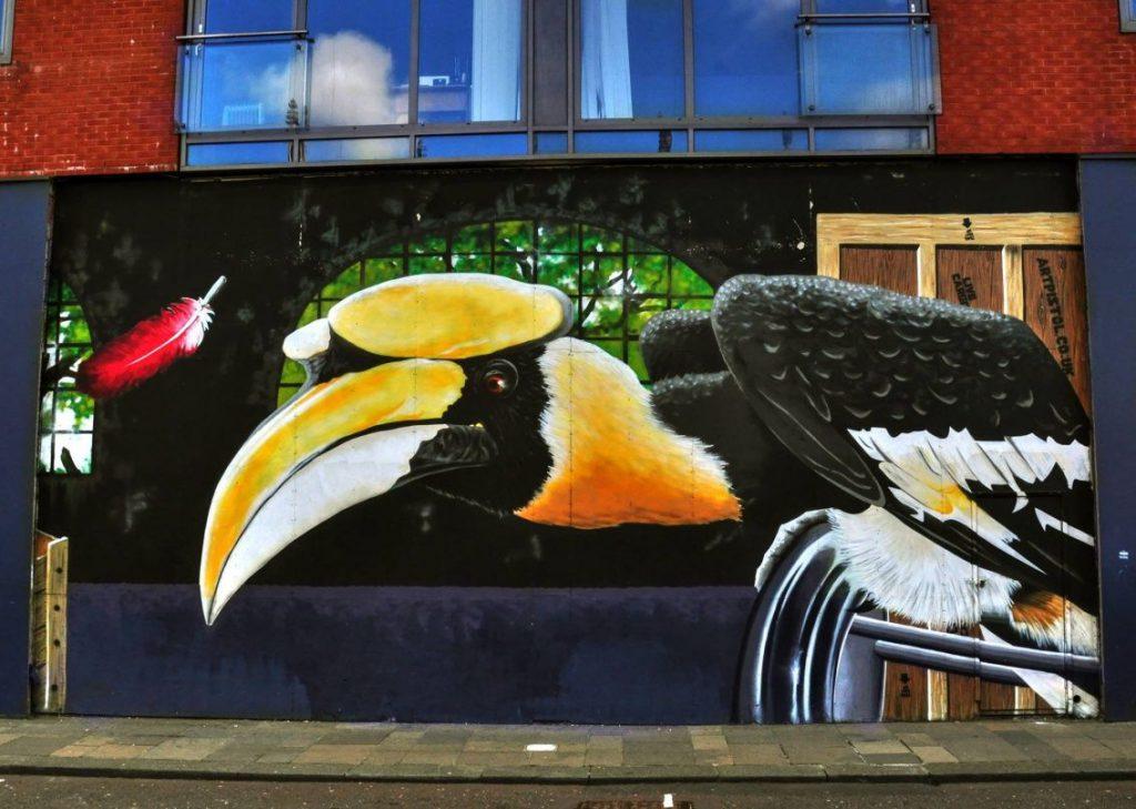 murales, pellicano