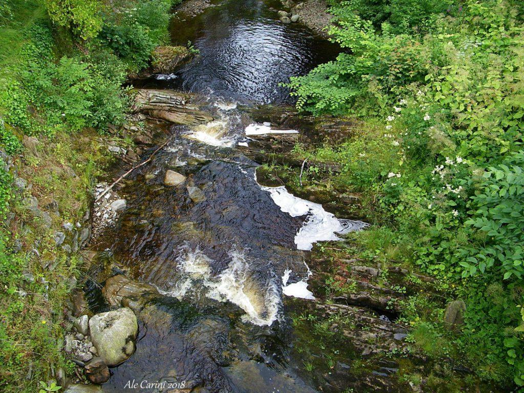 fiume che scorre all'interno del giardino