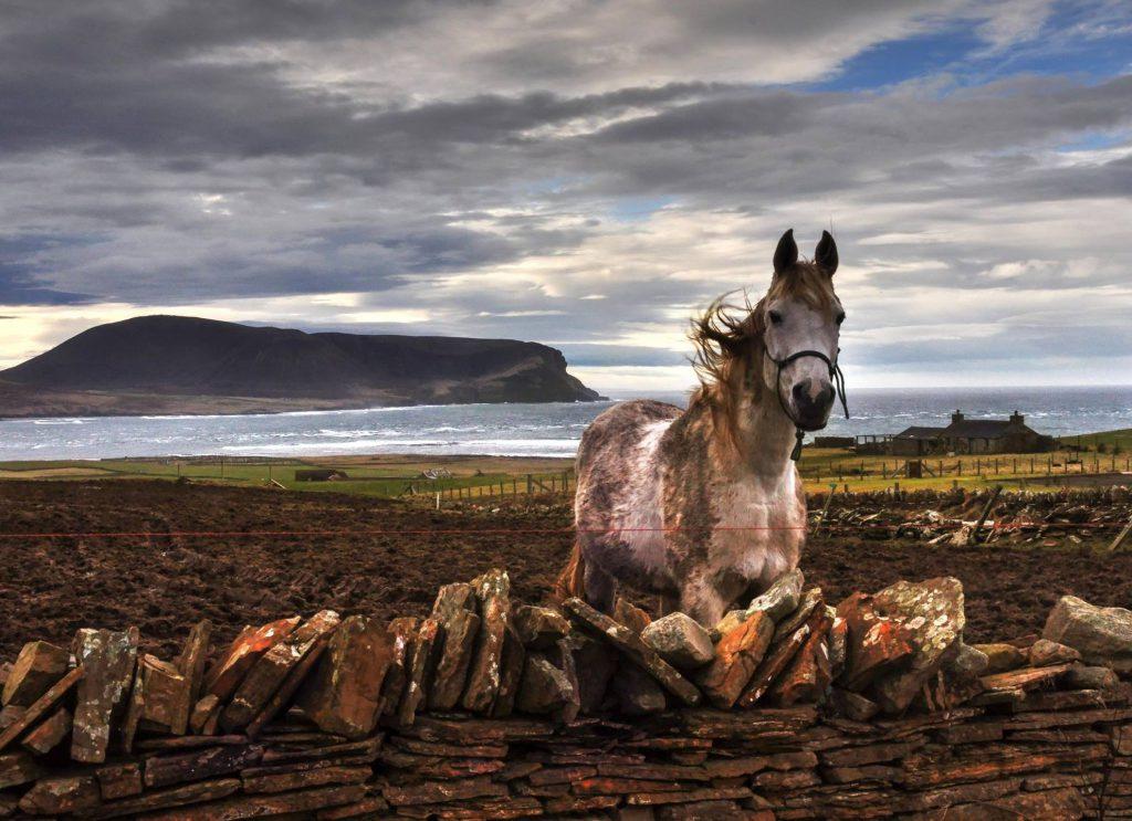 Natale in Scozia: tradizione, storia e usanze