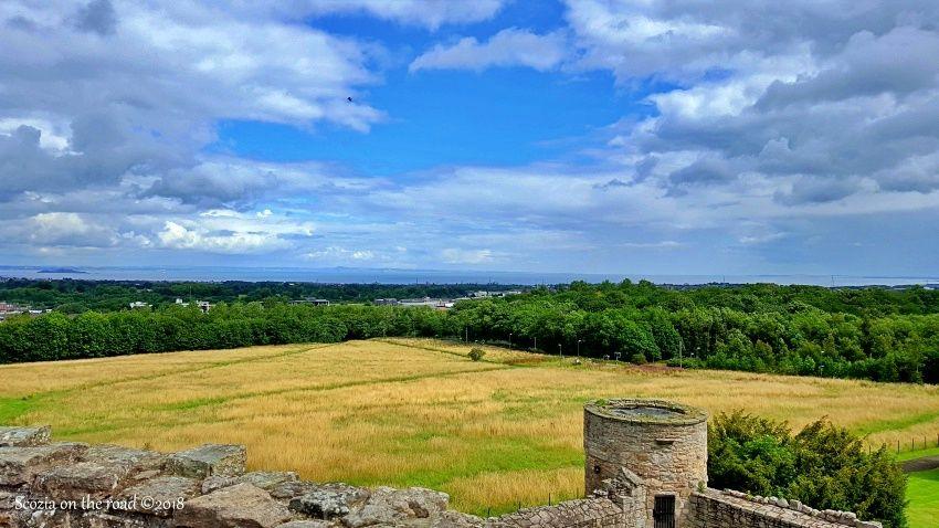 campo di grano e cielo