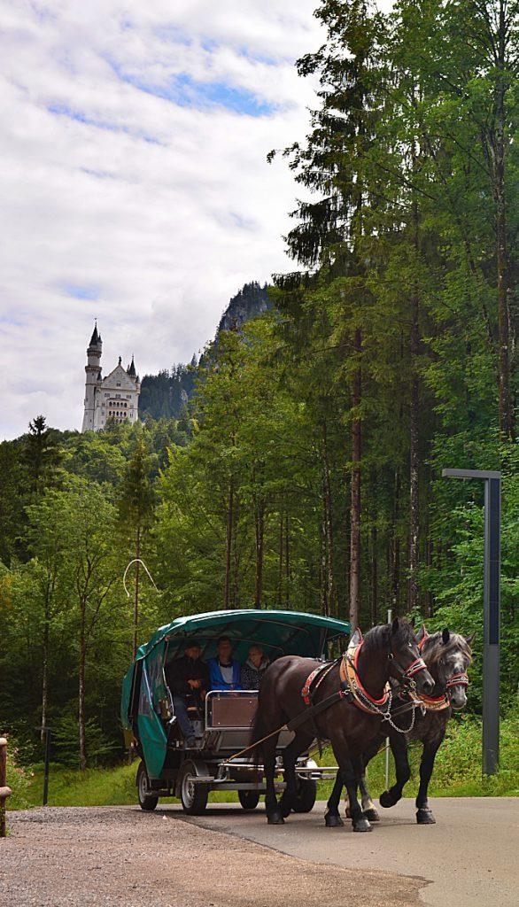 i castelli della Baviera