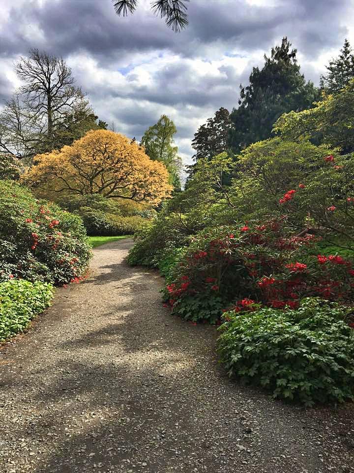 roayl botanic garden, cosa fare vicino edimburgo