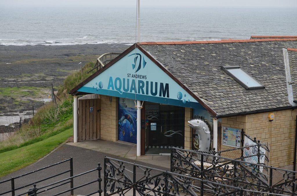 cosa vedere a saint andrews - aquarium
