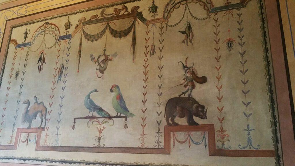 palazzo compagnucci - sala animali esotici - pinacoteca Girolamo Buratti