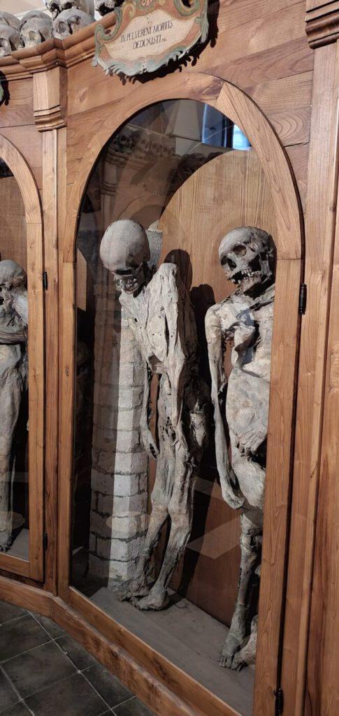 cimitero delle mummie, musei di urbania