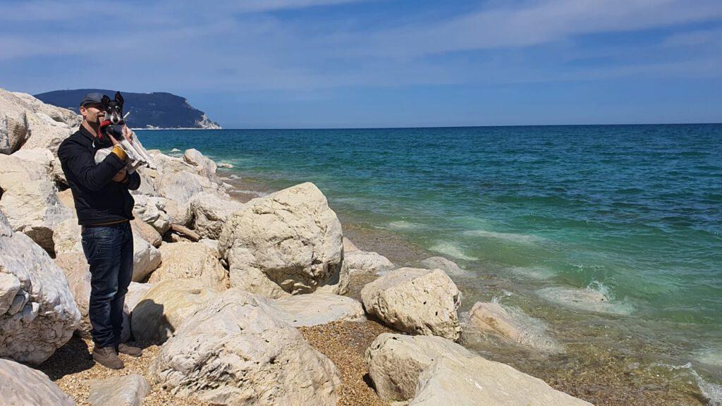 regolamento accesso alle spiagge nelle marche, al mare con il cane nelle marche, spiaggia cane marche