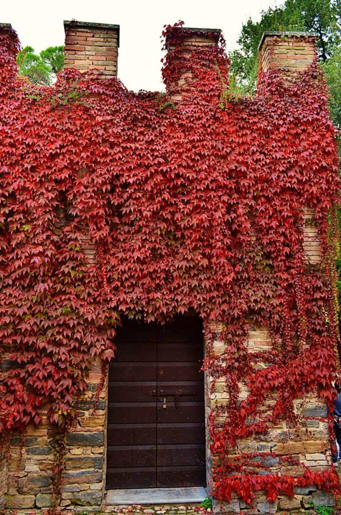 castello pallotta, foliage nelle marche, cosa fare in autunno nelle marche