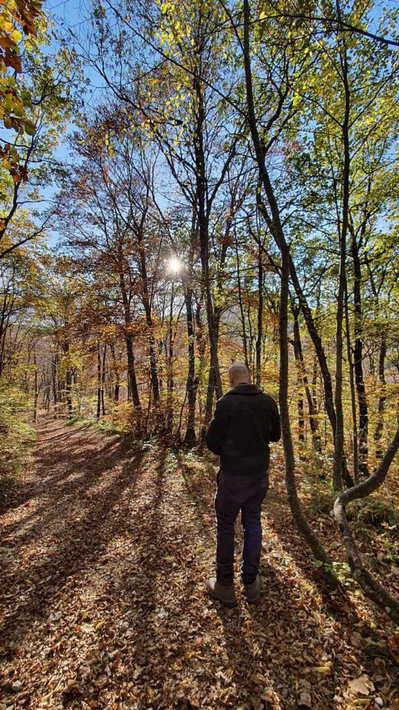 pian dell'elmo, autunno nelle marche
